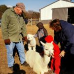 Celebrate the Season at Outstanding Dreams Farm's Holiday Open House.